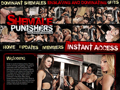 #4 - Shemale Punishers<br>(84 / 100)