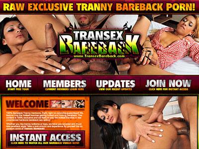 #10 - Transex Bareback<br>(78 / 100)